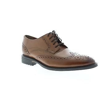 Bostonian Adult Mens Garvan Edge Wingtip & Brogue Oxfords & Lace Ups