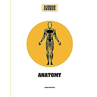 Anatomy - A Crash Course by Joanna Matthan - 9781782408598 Book