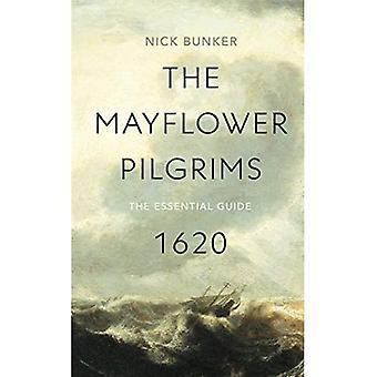 De Mayflower pelgrims