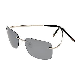 تبسيط النظارات الشمسية المستقطبة أشتون - الفضة / الفضة