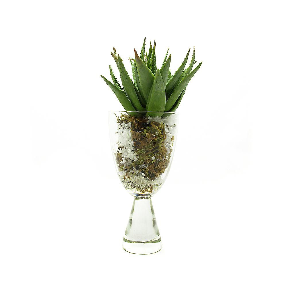 Artificial Succulent in Soil and Snow Vase, Arrangement 3. Real Touch and Look Greenery