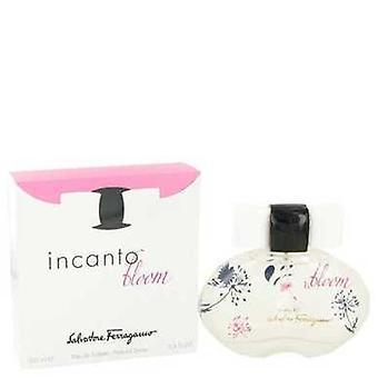 Incanto Bloom By Salvatore Ferragamo Eau De Toilette Spray (new Packaging) 3.4 Oz (women) V728-483622