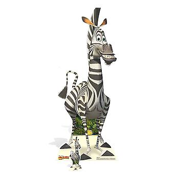 Marty the Zebra from Madagascar Cardboard Cutout / Standee / Standup / Standee