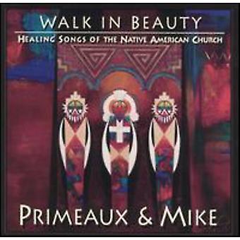 Primeaux/Mike - Walk in Beauty [CD] USA import