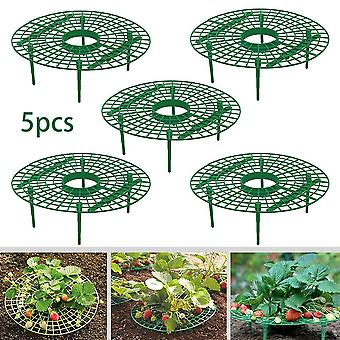 5pcs Plant Plastic Strawberry Growing Circle Support Rack, Harvest Frame