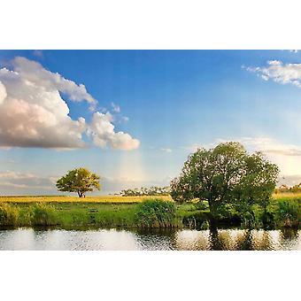 Fond d'écran Mural River Tree Paysage
