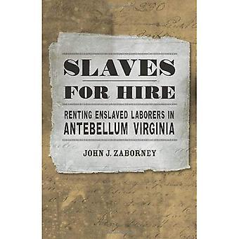 Slaven voor verhuur: huren tot slaaf arbeiders in Antebellum Virginia