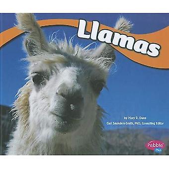 Lama 's