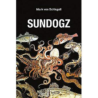 Sundogz (Semiotext(e) / syntyperäinen aineet)
