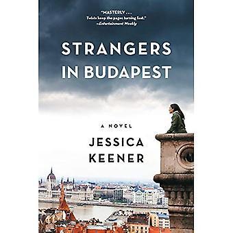 Extranjeros en Budapest: una novela