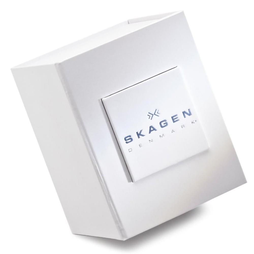 Skagen Skw2435 Hagen Silver & Black Leather Ladies Watch