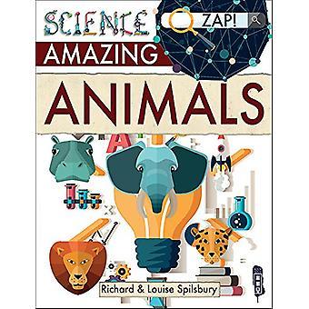 Amazing Animals by Louise & Richard Spilsbury - 9781912006694 Book