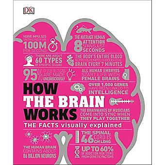 How the Brain Works - The Facts Visually Explained by DK - 97802414033