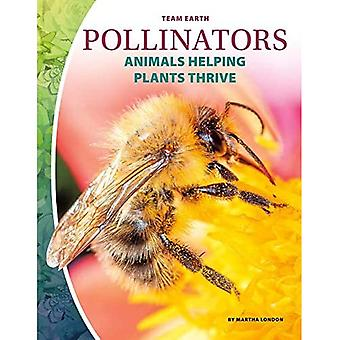 Team Earth: Pollinators