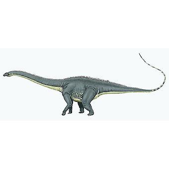 Sticker Sticker Dinosaur Dino Jurassic Deco Child Room Diplodocus