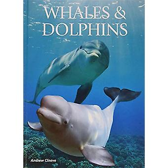 Whales & Dolphins by Andrew Cleave - 9781422243114 Book