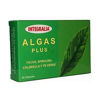 Seaweed Plus 60 capsules