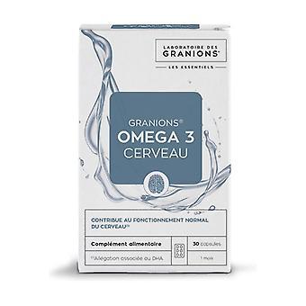 Omega 3 Brain 30 capsules