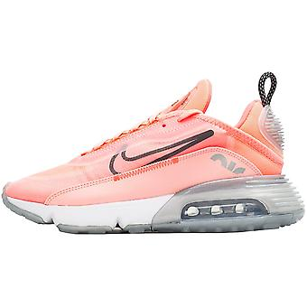 Nike Wmns Air Max 2090 CT7698600 καθολική όλο το χρόνο γυναικεία παπούτσια