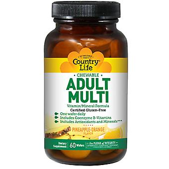 Country Life Chewable Adult's Multi with Complete Antioxidant System, 60 Wafers