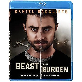 Beast of Burden [Blu-ray] USA import