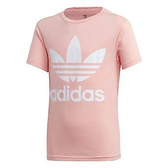 Adidas Trefoil Tee FM5661 univerzálny po celý rok muži t-shirt