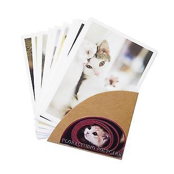 Cute Cartoon Cat Series Of Postcards Group Invitation Greeting Wish Card