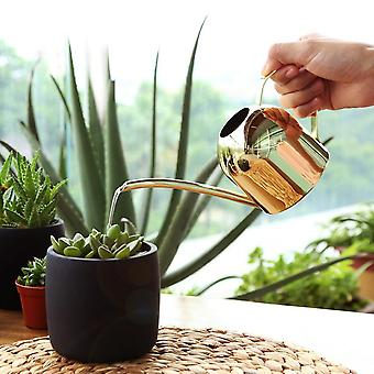Stainless Steel Pot Long Spout Indoors Watering Can