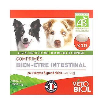 Intestinal Well-Being BIO Tablets Medium / Large Dog 10 tablets