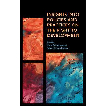 Approfondimenti sulle politiche e le pratiche sul diritto allo sviluppo Africa Prospettive presenti passate