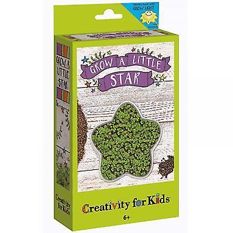 Créativité pour les enfants poussent un peu Star Kit