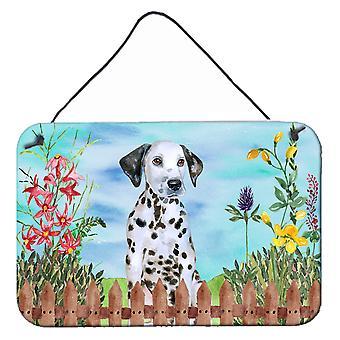 Dalmatische pup lente muur of deur hangen Prints