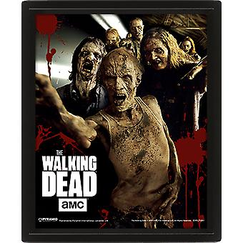 The Walking Dead Framed 3D Picture