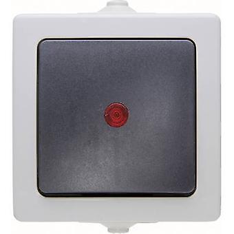 Kopp 566656002 Interruptor de sala húmeda rango de productos Interruptor de control Gris náutico