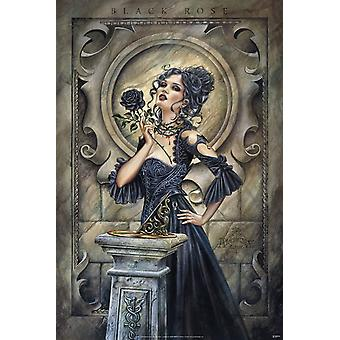 Poster - Alchemy - Black Rose Wall Art Licensed Gifts Toys 24706