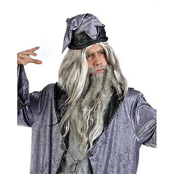 Wig magiker Druid herrer magiker magiker parykk Mage satt skjegg grå mens parykk