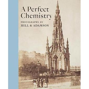 Perfect Chemistry by Lyden & Anne M.