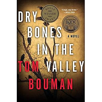 Dry Bones in the Valley - A Novel