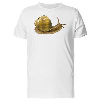 Tegning af en brun sneglen Tee mænd-billede af Shutterstock