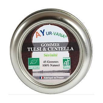 Tulsi & Centella biologische tandvlees 45 g