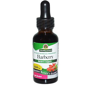 Nature's Answer, Barberry, Bajo en Alcohol, 2.000 mg, 1 fl oz (30 ml)