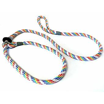 Kjk Ropeworks Braided Slip Lead (120cm) With Rubber Stop Rainbow Coloured (8mm x 150cm)