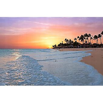 Fondo de pantalla Mural Aruba Beach Sunset