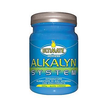 Alkalyn System 100 g of powder