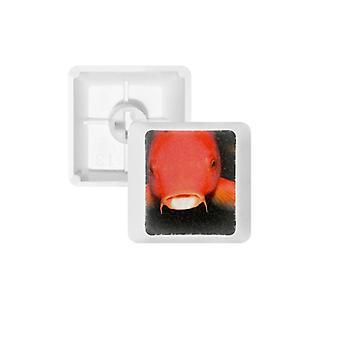 赤い魚のキーキャップ キーボード