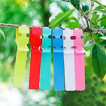 Blandad färg plastetikett krage för trädgårdsredskap, kan hängas och kan skriva B (200 stycken)
