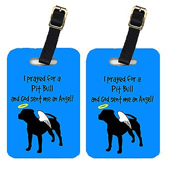 Carolines Treasures  AN1153BT Pair of 2 Pit Bull Luggage Tags