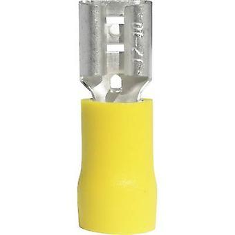Vogt Verbindungstechnik 3907S receptáculo de hoja ancho conector: 6,3 mm conector espesor: 0,8 mm 180 ° parcialmente aislado amarillo 1 PC
