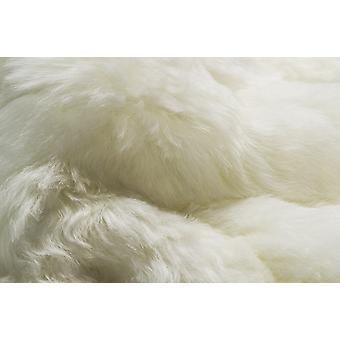 White 2' x 3' Natural Sheepskin Fur Area Rug