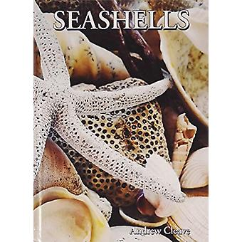 Seashells by Andrew Cleave - 9781422243084 Book